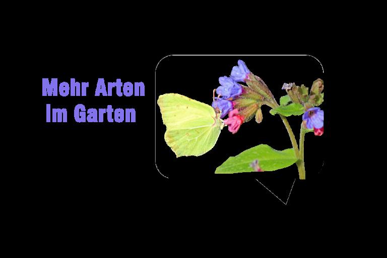 Mehr Arten im Garten